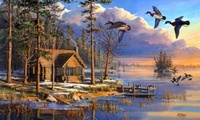 spring, sunrise, forest, house, flying, mary pettis, lake, painting, ducks, ...