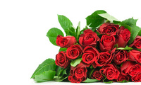 cool, lovely, pretty, beautiful, rose, Flower, flowers, nice, bouquet, red  ...