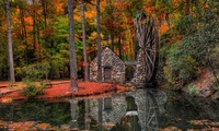 forest, trees, Leaves, alley, park, nature, water mill, hdr, river, water,  ...