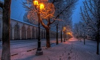 road, street, lights, winter, Nature, walk, парк, park, snow, природа, tree ...