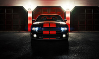 ronaldo stewart photography, gt500, mustang, shelby, cobra, Ford