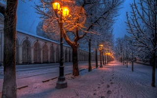 road, street, lights, winter, Nature, walk, парк, park, snow, природа, trees, path