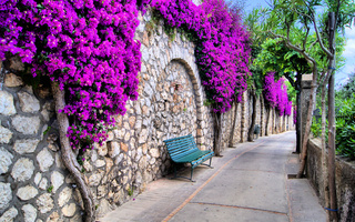 City, flowers, bench, italy, красивый, streets, trees, beautiful, город